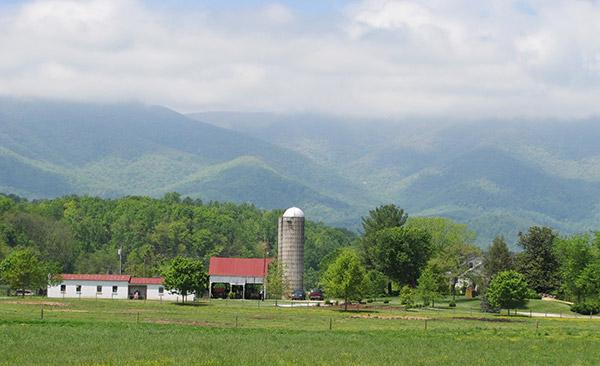 Rose-Isle-Farm