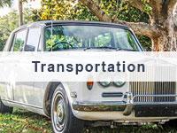 Nelson County transportation