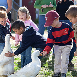 kids on farm with geese