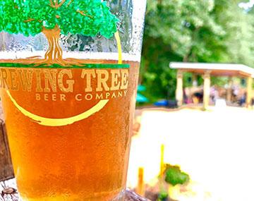 Brewing-Tree-Beer-Company