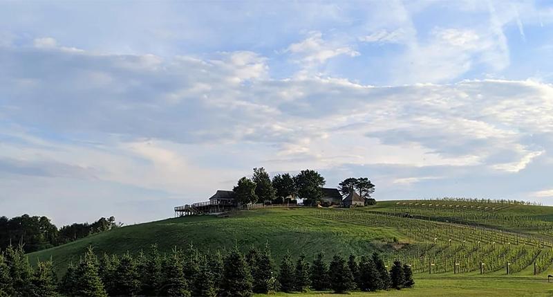 12-Ridges-Vineyard