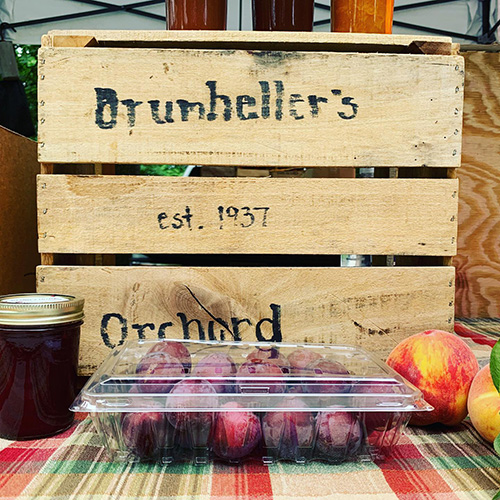 Drumheller's Orchard