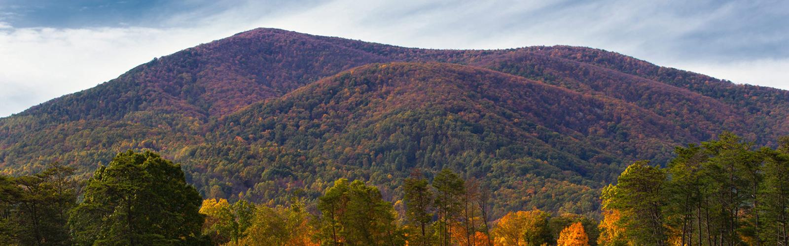 Wintergreen Resort Fall Colors