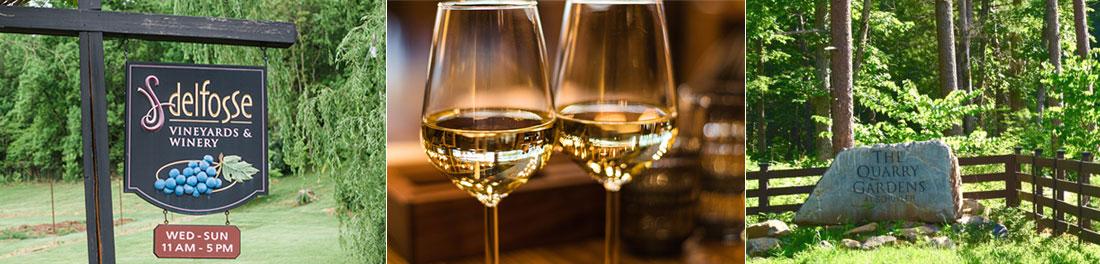 nelson-county-wine-delfosse