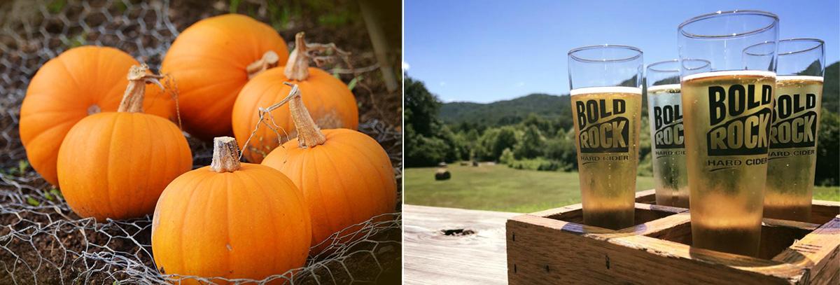 pumpkins-and-bold-rock-cider