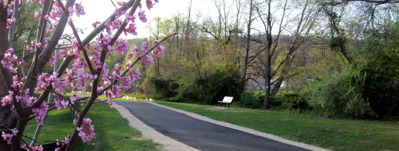Waynesboro-Park System